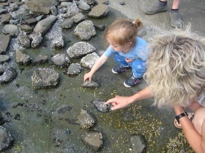 Nana and Nora looking at tidal pools.
