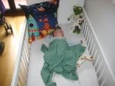 Max slept through the fun.