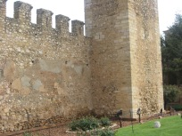 Birds of prey in front of a castle wall.